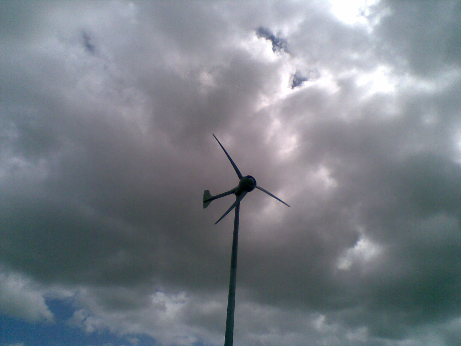 Eco Evolution BlogSmall wind turbines ride out last week's