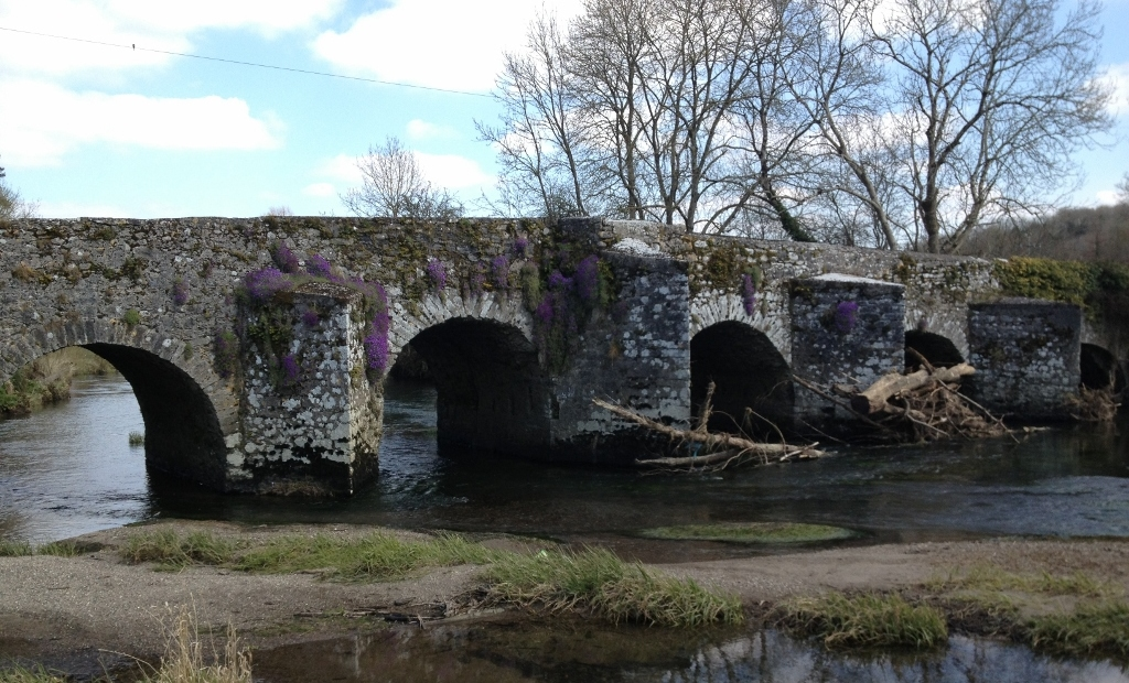 The oldest or one of the oldest bridges in Ireland