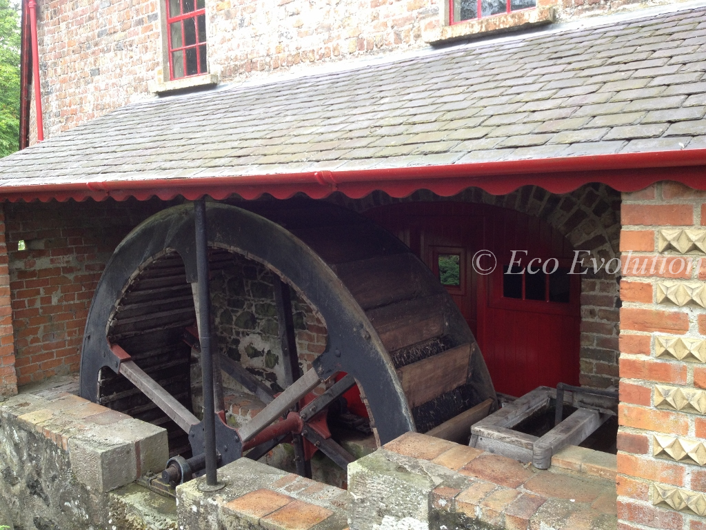 The working water wheel