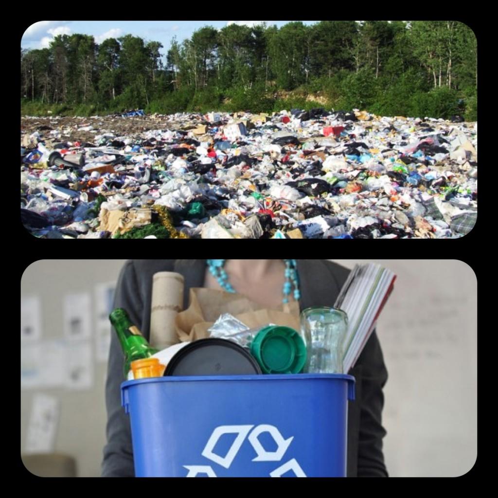 Landfill or recycle bin?