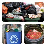 Chooseday's Choice! ~ Dustbin, compost or recycle bin?