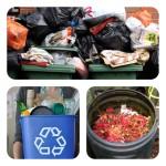 Chooseday's Choice! ~ Dustbin, compost or recycle bin?