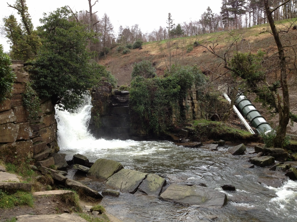 Hydropower installation and restoration of Penllergare Valley Woods