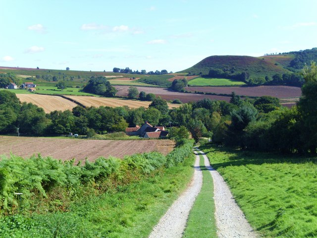 Photo Credit: Track to Lowna Mill-_geograph.org.uk_-_1522504