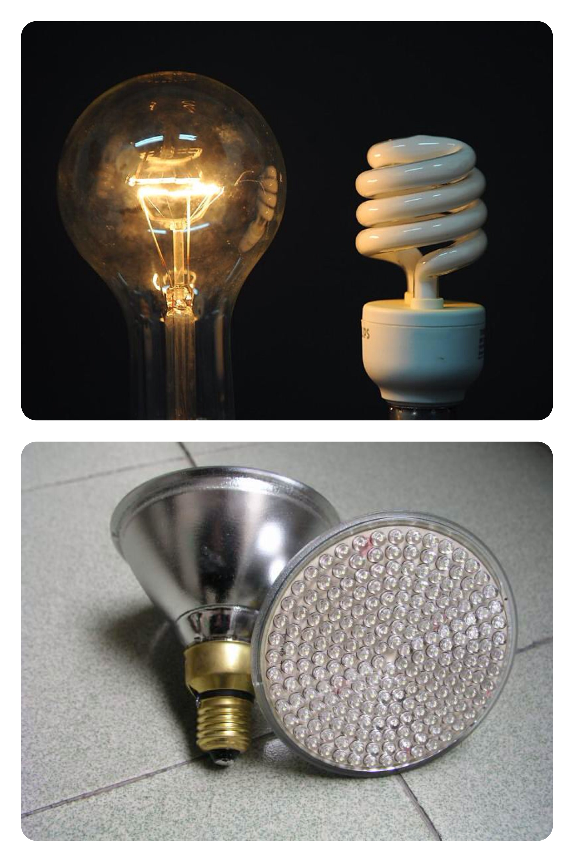 Eco Evolution Blogchooseday 39 S Choice Energy Efficient Or Incandescent Bulbs