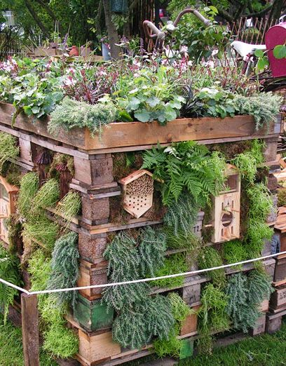 Build an Insect Hotel for Winter Hibernation