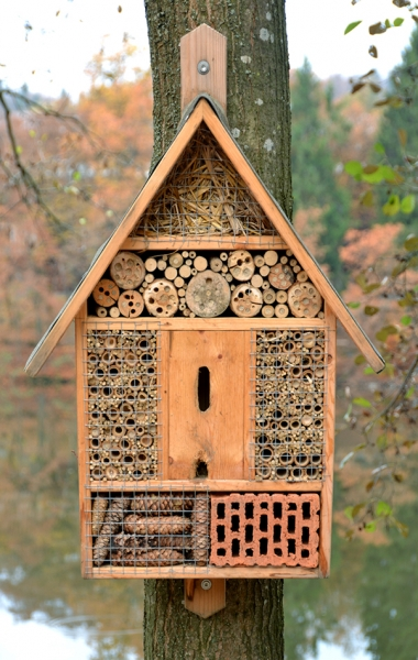 Building an insect hotel for Winter hibernation